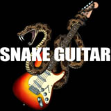 snakeguitarlogox.jpg